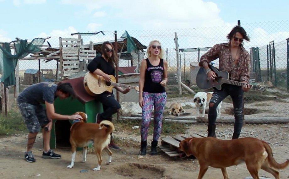 The Madcap'ten Küçük Dostlarımız için Şarkı; 'Sessiz Çığlık'